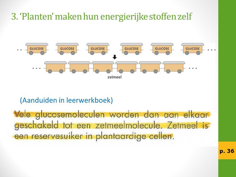 3. 'Planten' maken hun energierijke stoffen zelf (Aanduiden in leerwerkboek) p. 36