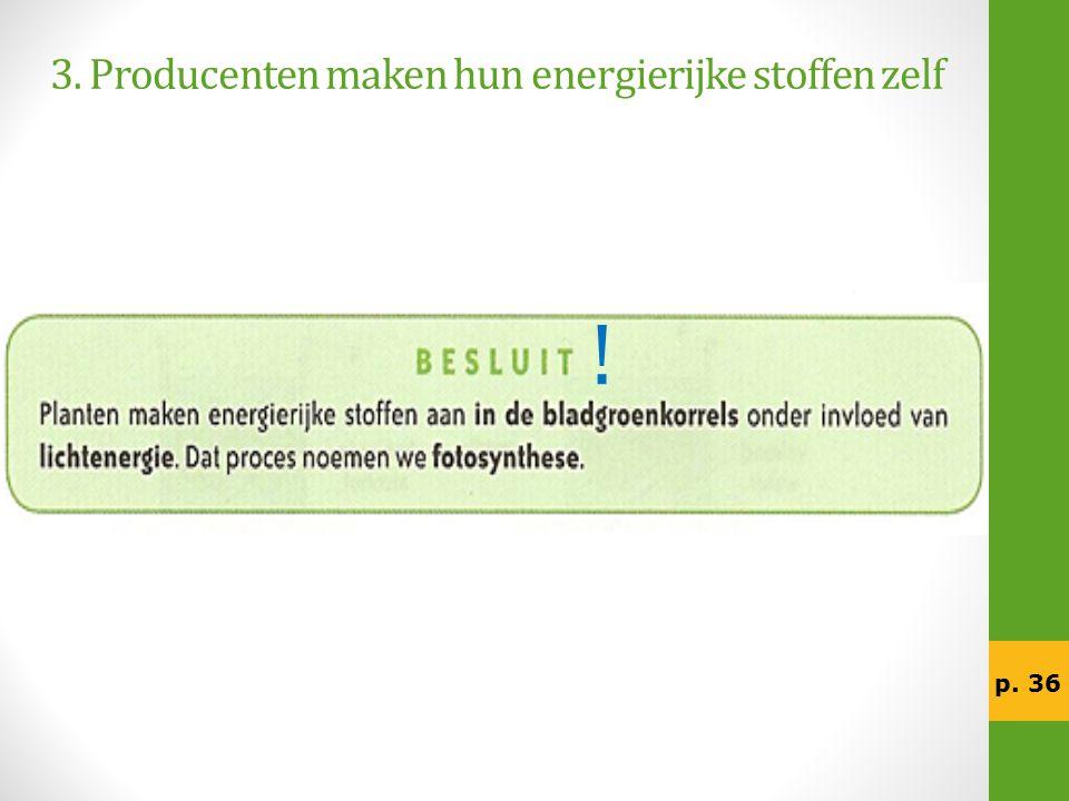 3. Producenten maken hun energierijke stoffen zelf p. 36