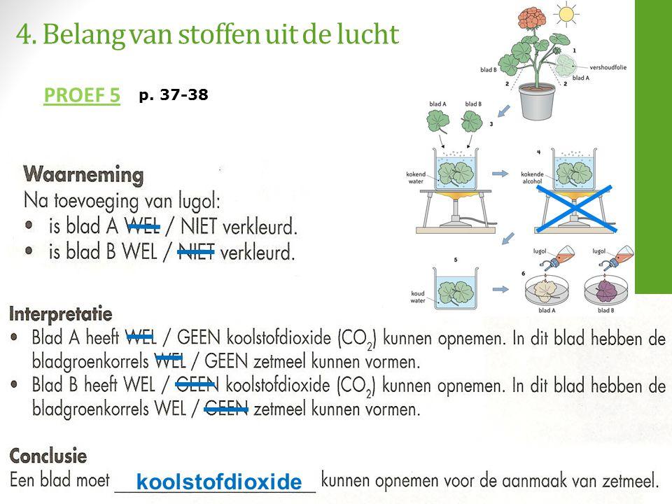 4. Belang van stoffen uit de lucht PROEF 5 koolstofdioxide p. 37-38