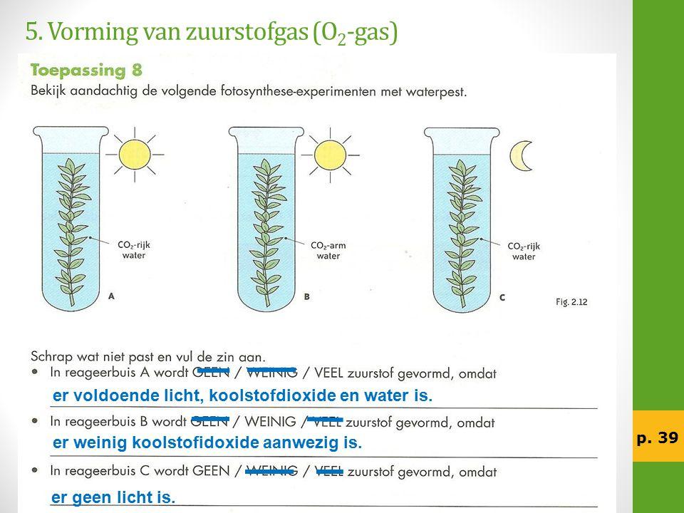 5. Vorming van zuurstofgas (O 2 -gas) er voldoende licht, koolstofdioxide en water is. er weinig koolstofidoxide aanwezig is. er geen licht is. p. 39
