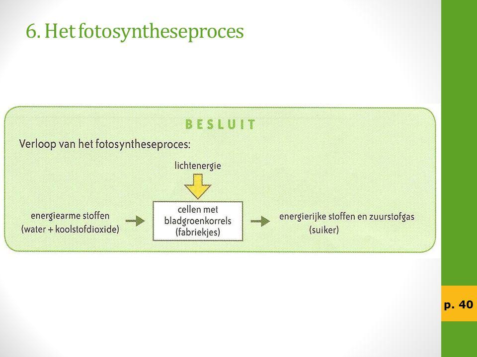 6. Het fotosyntheseproces p. 40