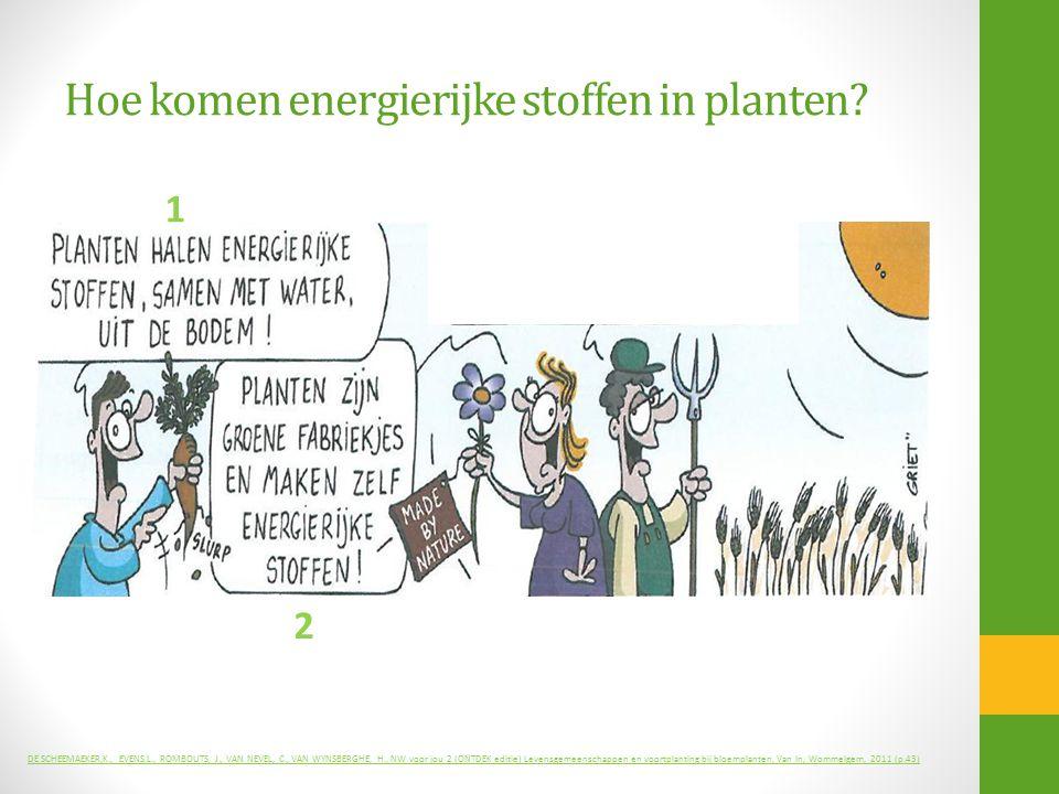 Hoe komen energierijke stoffen in planten? 1 2 DE SCHEEMAEKER,K., EVENS,L., ROMBOUTS, J., VAN NEVEL, C., VAN WYNSBERGHE, H., NW voor jou 2 (ONTDEK edi