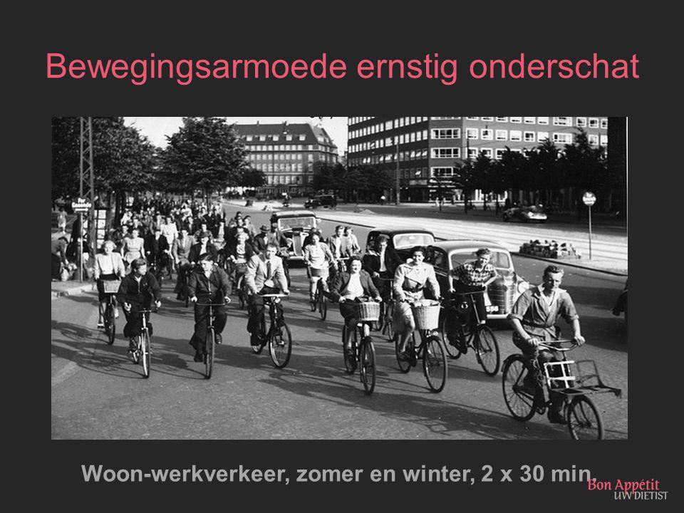 Bewegingsarmoede ernstig onderschat Woon-werkverkeer, zomer en winter, 2 x 30 min.