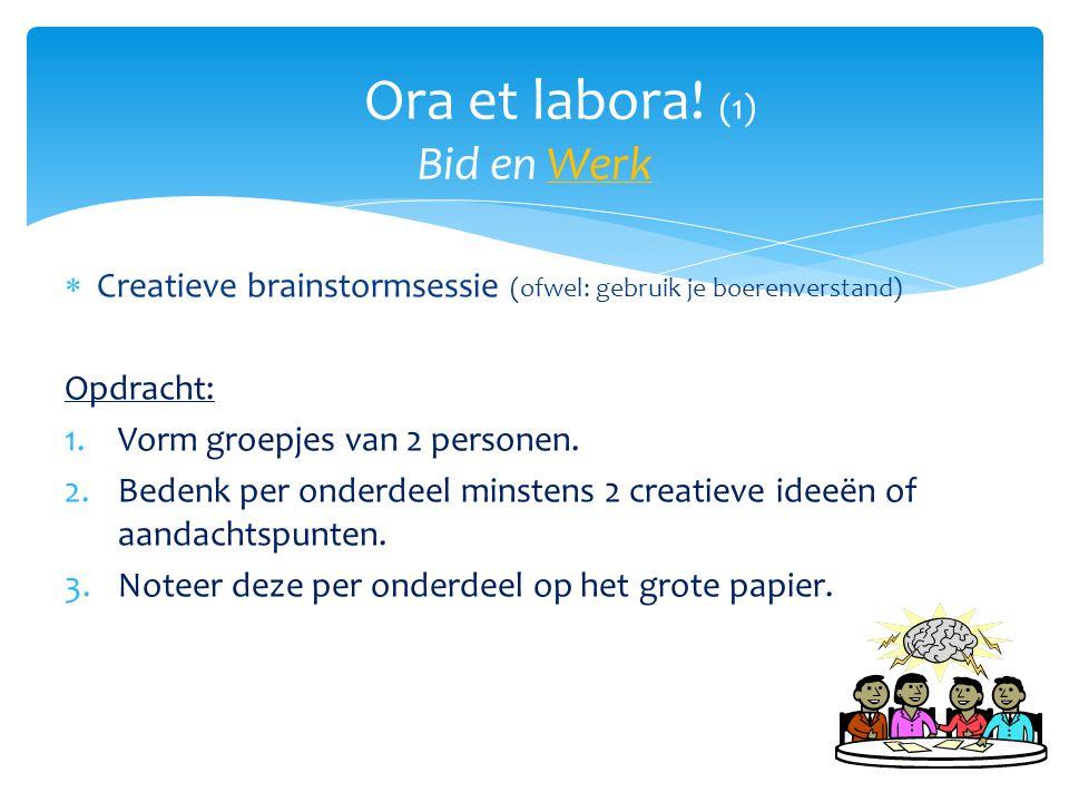  Creatieve brainstormsessie (ofwel: gebruik je boerenverstand) Opdracht: 1.Vorm groepjes van 2 personen. 2.Bedenk per onderdeel minstens 2 creatieve