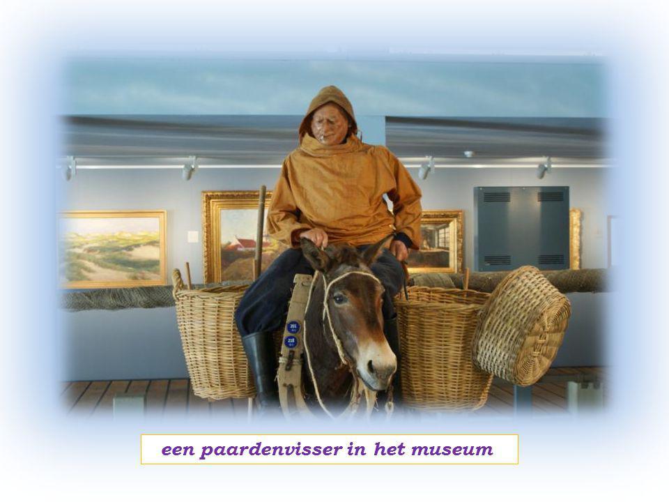 Willem Conservator van het Visserijmuseum