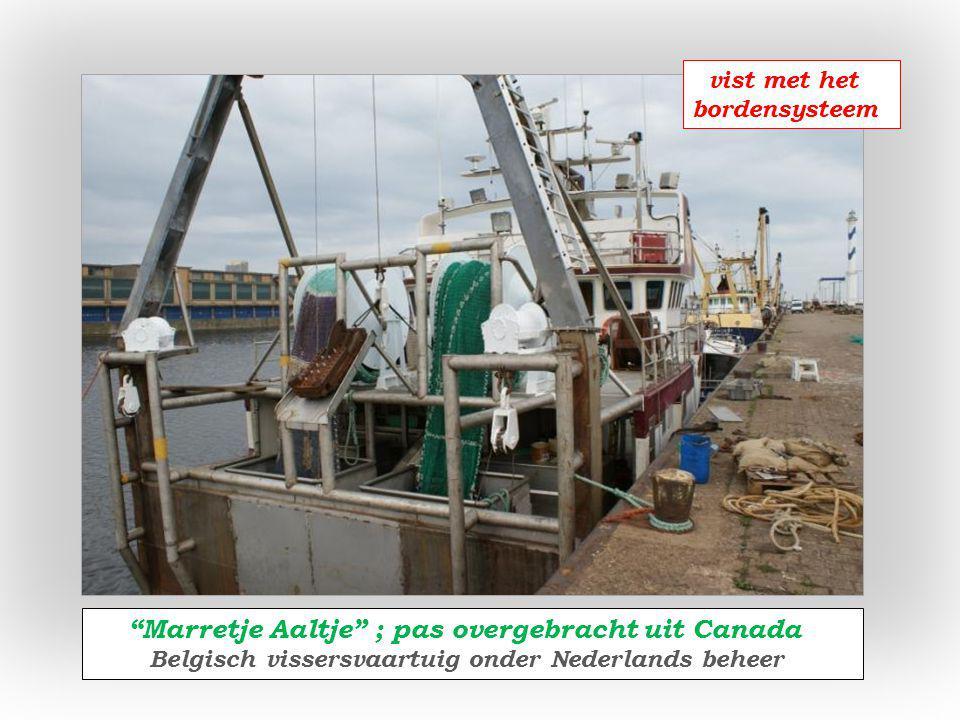 Albert Oostends reder van drie vissersvaartuigen w.o.