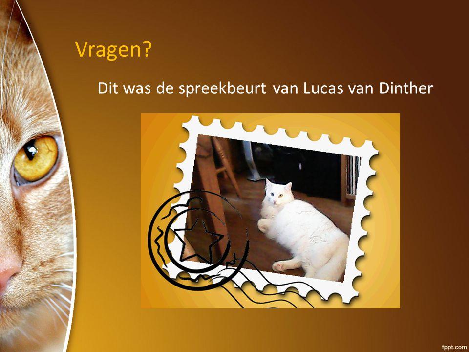 Vragen? Dit was de spreekbeurt van Lucas van Dinther