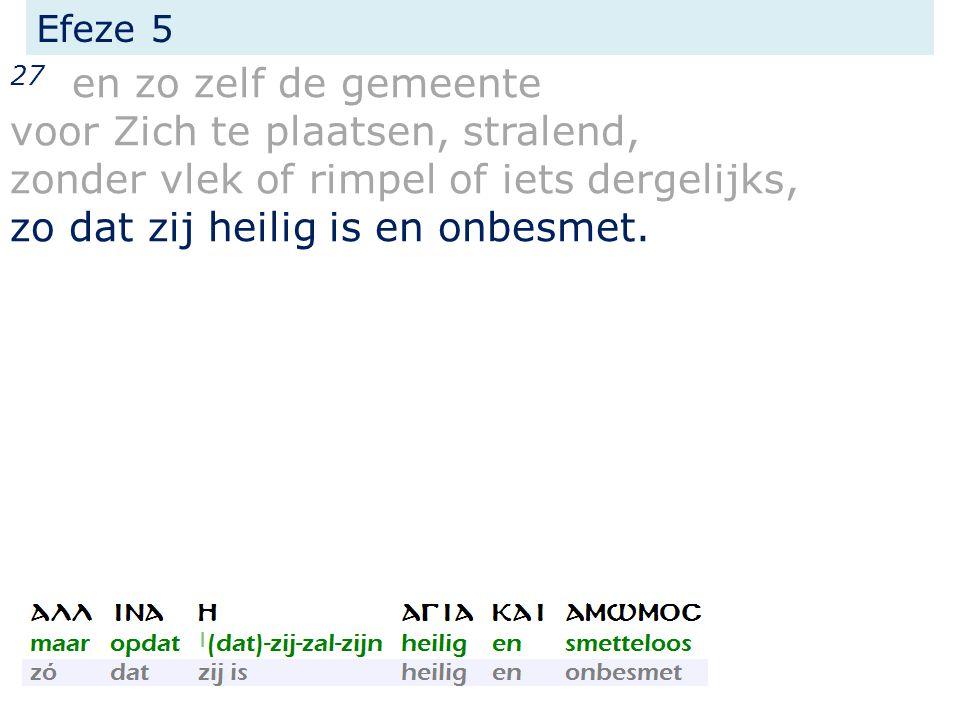 Efeze 5 27 en zo zelf de gemeente voor Zich te plaatsen, stralend, zonder vlek of rimpel of iets dergelijks, zo dat zij heilig is en onbesmet.