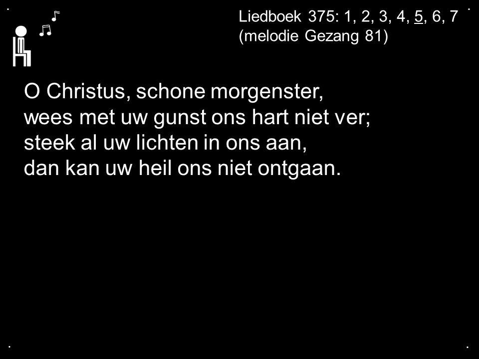 .... Liedboek 375: 1, 2, 3, 4, 5, 6, 7 (melodie Gezang 81) O Christus, schone morgenster, wees met uw gunst ons hart niet ver; steek al uw lichten in