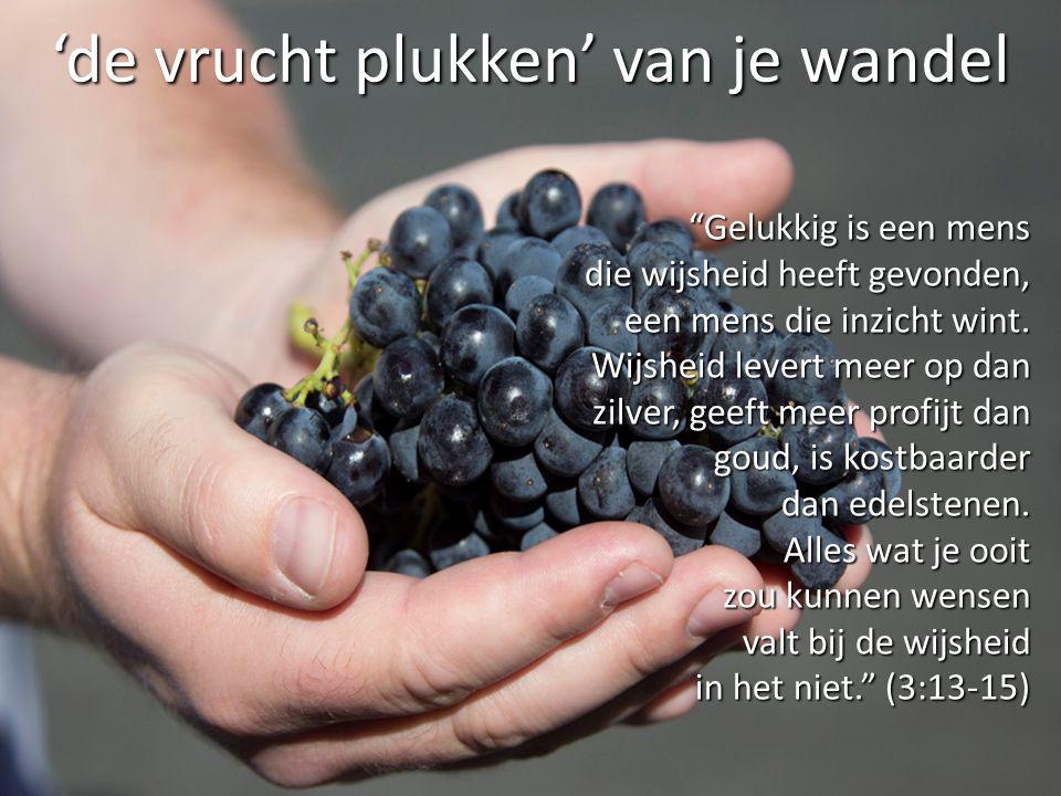 """'de vrucht plukken' van je wandel """"Gelukkig is een mens die wijsheid heeft gevonden, een mens die inzicht wint. Wijsheid levert meer op dan zilver, ge"""