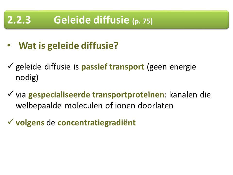 Wat is geleide diffusie? geleide diffusie is passief transport (geen energie nodig) via gespecialiseerde transportproteïnen: kanalen die welbepaalde m