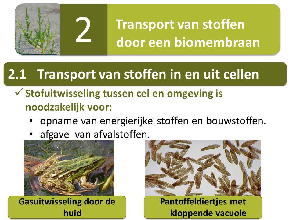 Transport van stoffen door een biomembraan Transport van stoffen door een biomembraan 2 2 Stofuitwisseling tussen cel en omgeving is noodzakelijk voor
