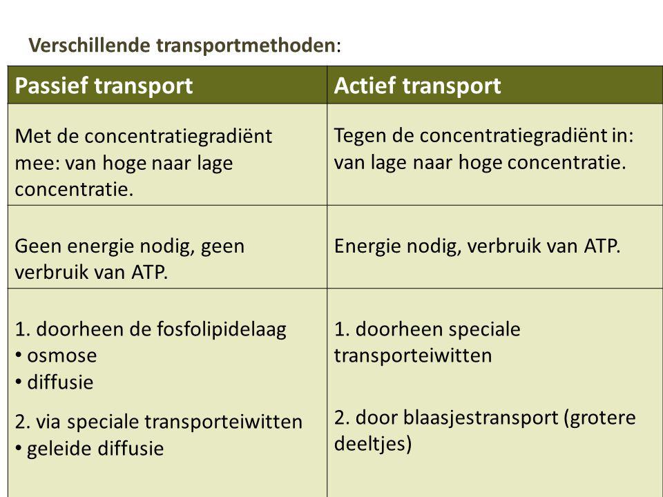 Passief transportActief transport Met de concentratiegradiënt mee: van hoge naar lage concentratie. Tegen de concentratiegradiënt in: van lage naar ho