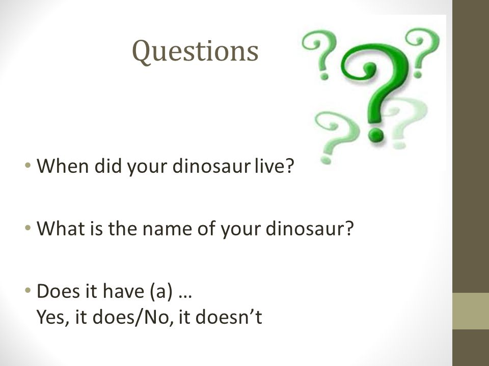 Questions When did your dinosaur live. What is the name of your dinosaur.