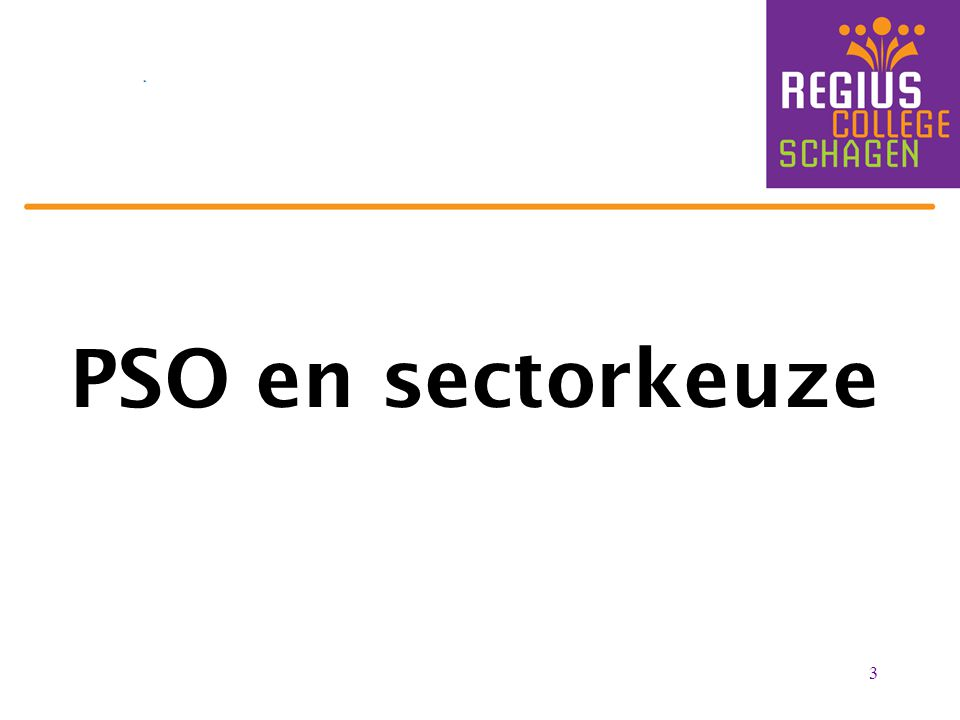3 PSO en sectorkeuze