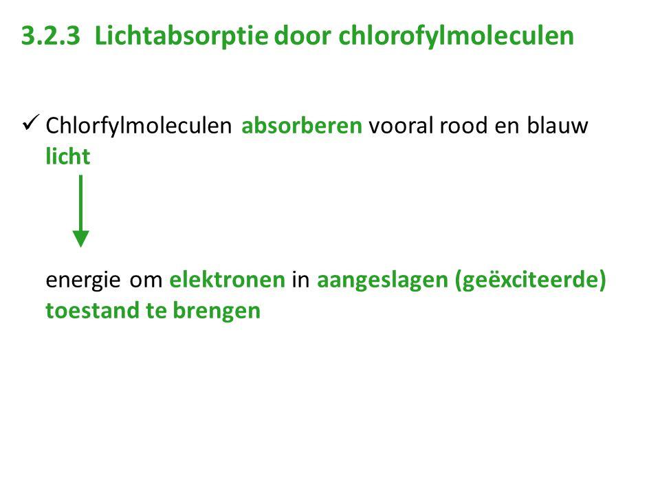 3.2.3 Lichtabsorptie door chlorofylmoleculen Chlorfylmoleculen absorberen vooral rood en blauw licht energie om elektronen in aangeslagen (geëxciteerd