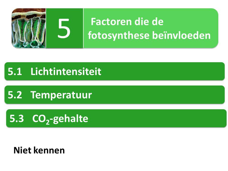 Factoren die de fotosynthese beïnvloeden Factoren die de fotosynthese beïnvloeden 5 5 5.1Lichtintensiteit 5.2Temperatuur 5.3CO 2 -gehalte Niet kennen
