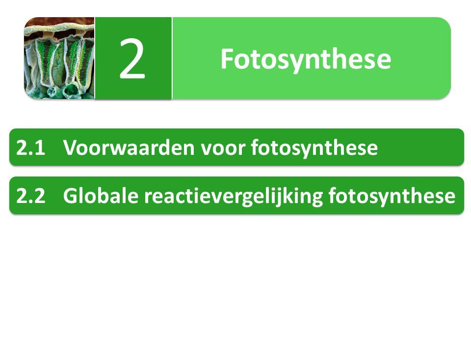 Fotosynthese 2 2 2.1Voorwaarden voor fotosynthese 2.2Globale reactievergelijking fotosynthese