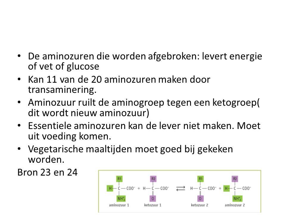 De aminozuren die worden afgebroken: levert energie of vet of glucose Kan 11 van de 20 aminozuren maken door transaminering. Aminozuur ruilt de aminog