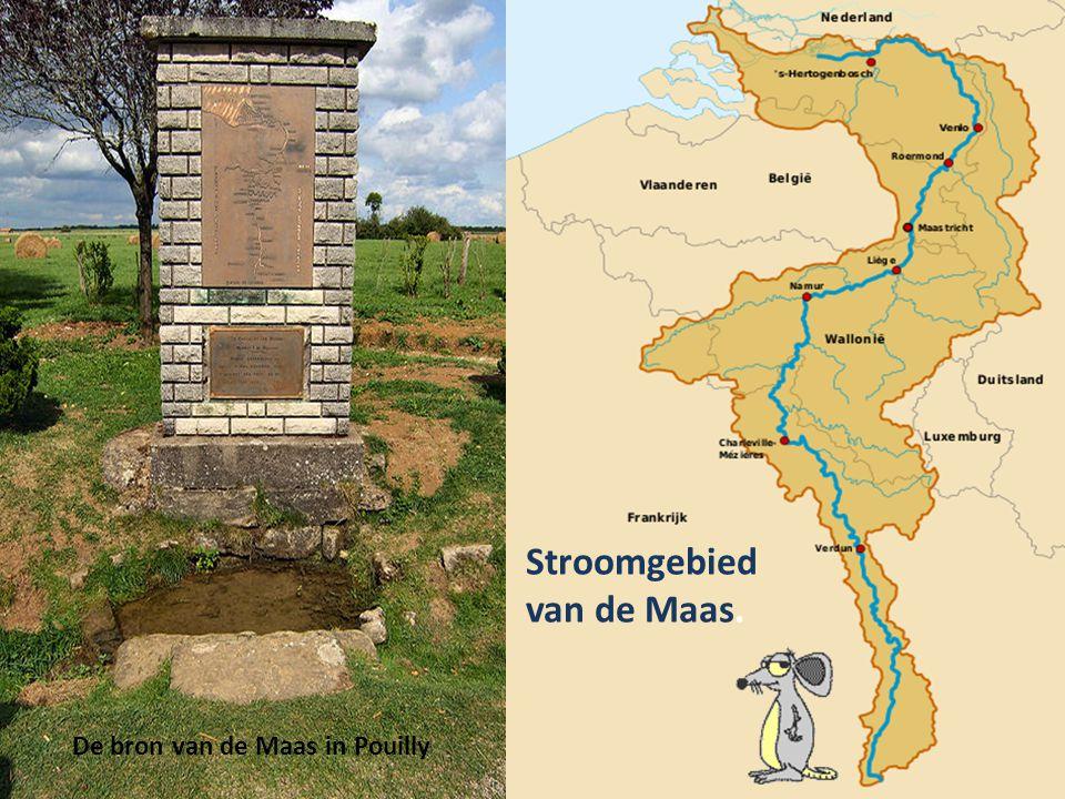 Brug over de Maas bij Huy, Ofwel (Vlaams) Hoei.