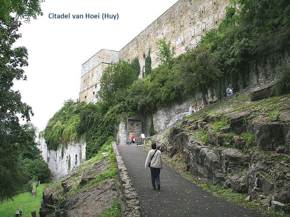 De Maas bij Huy