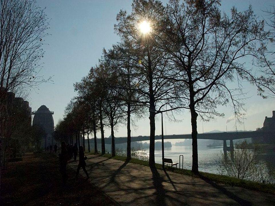 Sint Servaesbrug in Maastricht
