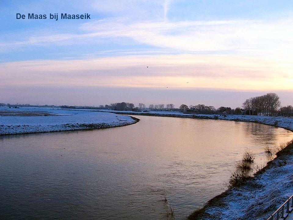 Veerboot Meeswijk - Berg