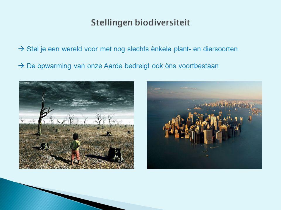 Stellingen biodiversiteit  Stel je een wereld voor met nog slechts ènkele plant- en diersoorten.  De opwarming van onze Aarde bedreigt ook òns voort
