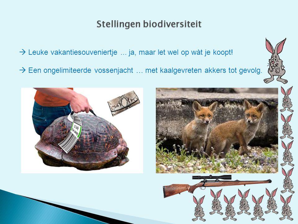 Stellingen biodiversiteit  Leuke vakantiesouveniertje... ja, maar let wel op wàt je koopt!  Een ongelimiteerde vossenjacht … met kaalgevreten akkers