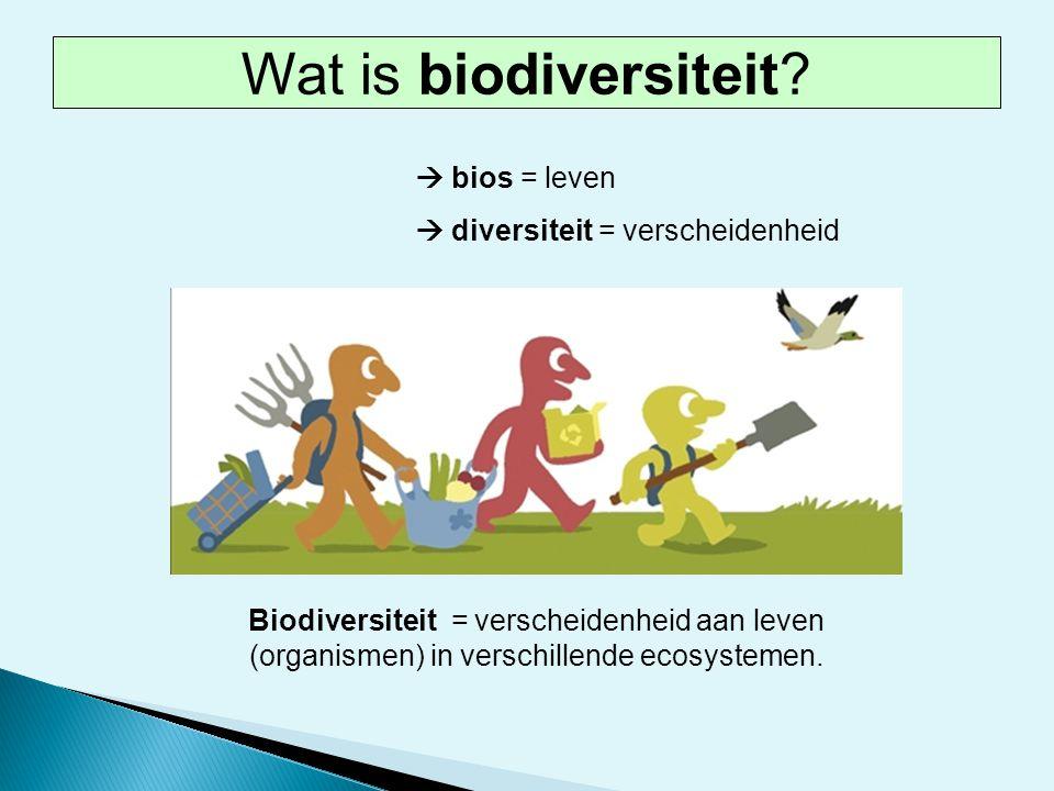  bios = leven  diversiteit = verscheidenheid Biodiversiteit = verscheidenheid aan leven (organismen) in verschillende ecosystemen. Wat is biodiversi