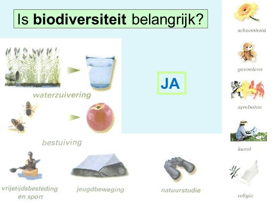 JA Is biodiversiteit belangrijk?