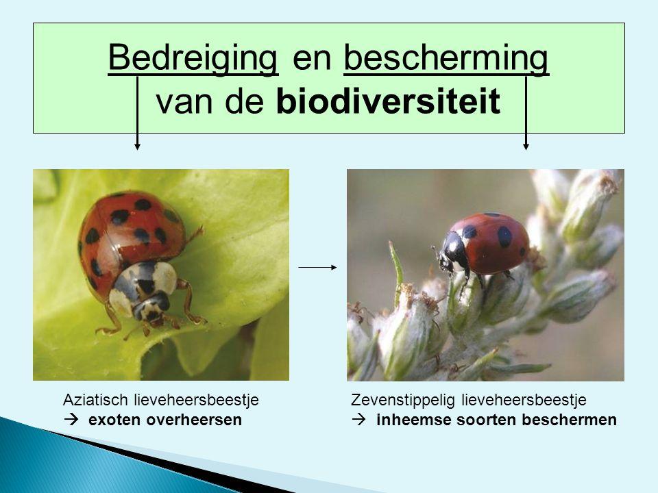 Stellingen biodiversiteit  Leuke vakantiesouveniertje...