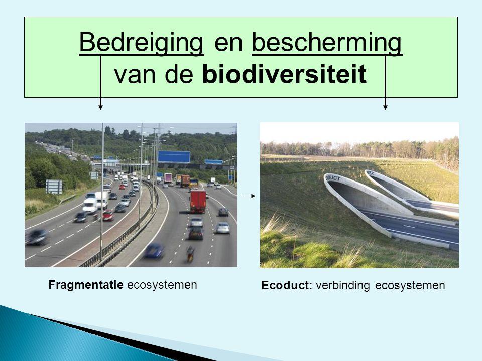 Fragmentatie ecosystemen Ecoduct: verbinding ecosystemen Bedreiging en bescherming van de biodiversiteit