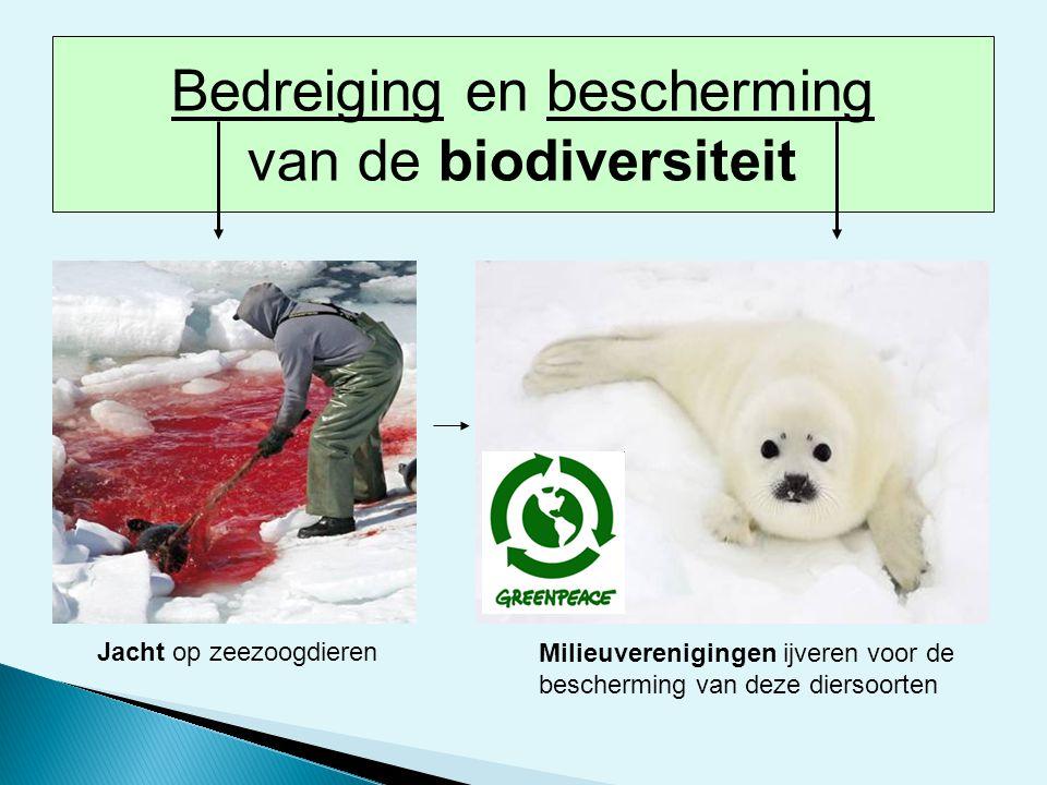 Jacht op zeezoogdieren Milieuverenigingen ijveren voor de bescherming van deze diersoorten Bedreiging en bescherming van de biodiversiteit