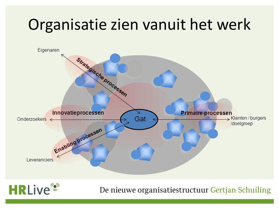 Organisatie zien vanuit het werk Primaire processen Klanten / burgers /doelgroep Leveranciers Eigenaren Strategische processen Gat Enabling processen