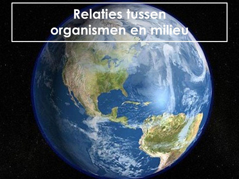 Relaties tussen organismen en milieu