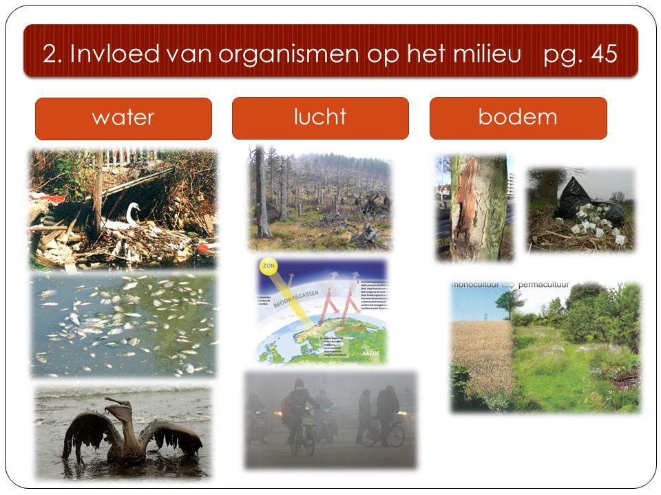 water 2. Invloed van organismen op het milieu pg. 45 luchtbodem