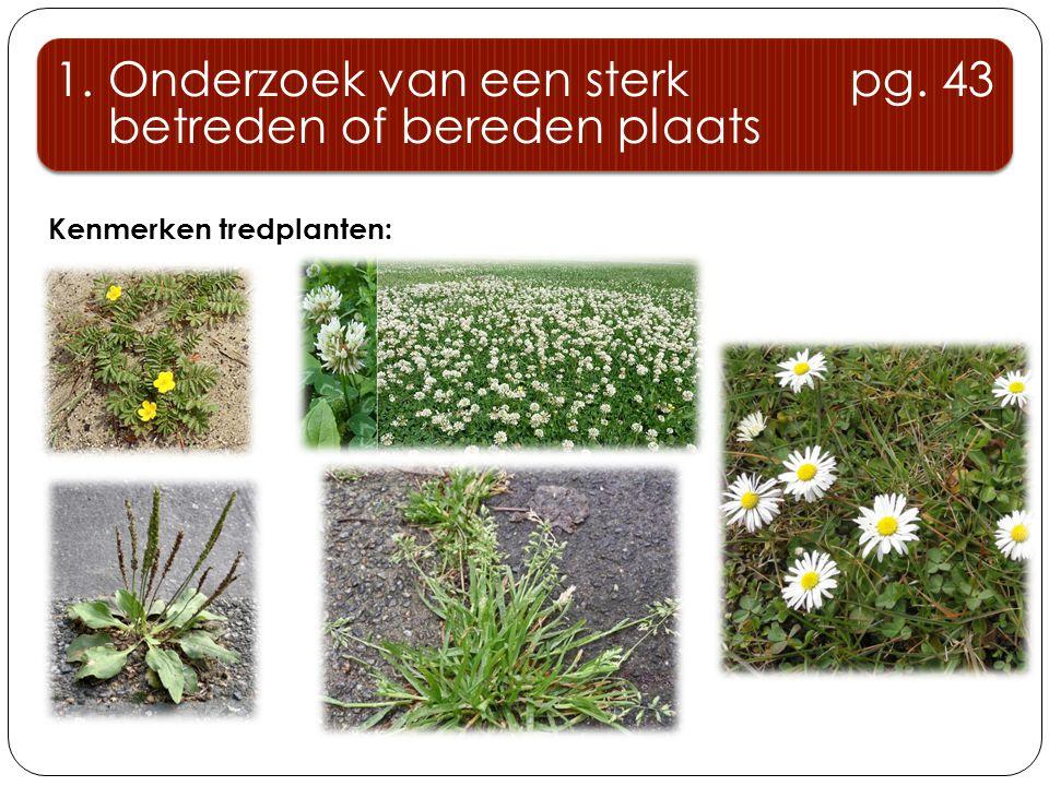 Kenmerken tredplanten: 1. Onderzoek van een sterk pg. 43 betreden of bereden plaats 1. Onderzoek van een sterk pg. 43 betreden of bereden plaats