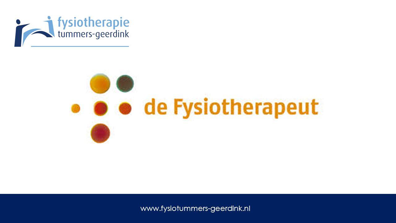 Acupunctuur www.fysiotummers-geerdink.nl