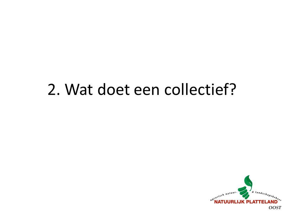 2. Wat doet een collectief?