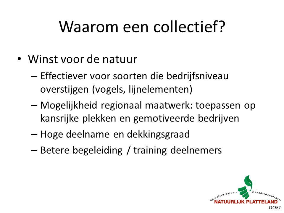 Waarom een collectief? Winst voor de natuur – Effectiever voor soorten die bedrijfsniveau overstijgen (vogels, lijnelementen) – Mogelijkheid regionaal