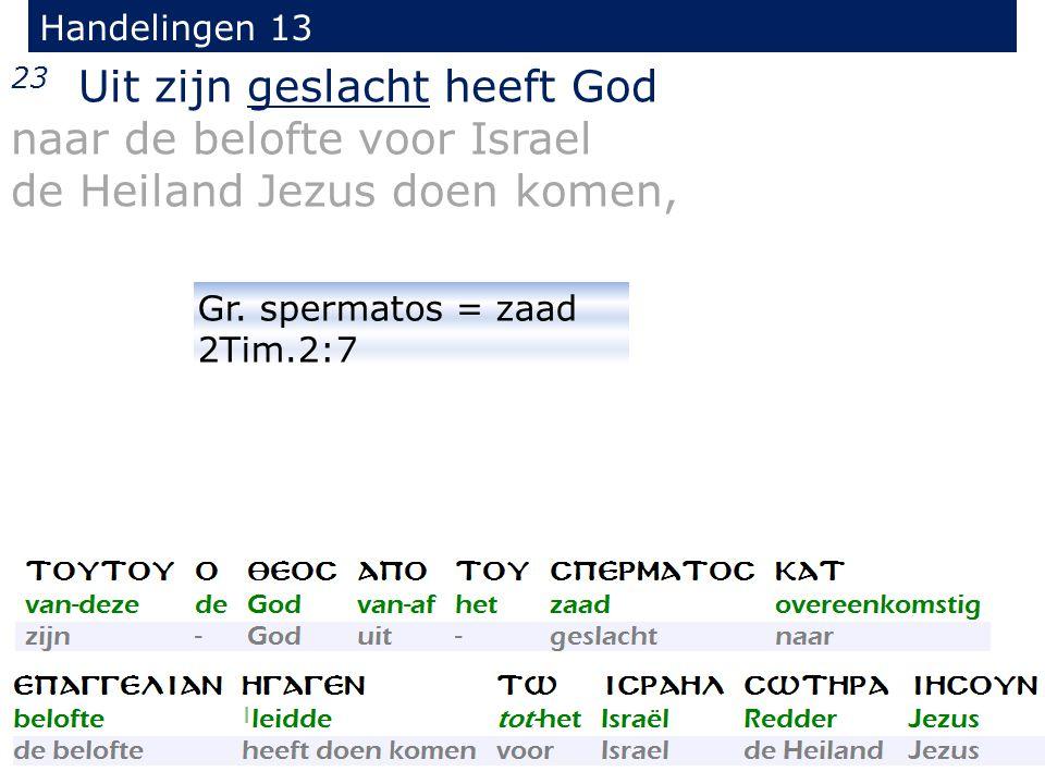 23 Uit zijn geslacht heeft God naar de belofte voor Israel de Heiland Jezus doen komen, Handelingen 13 Gr.