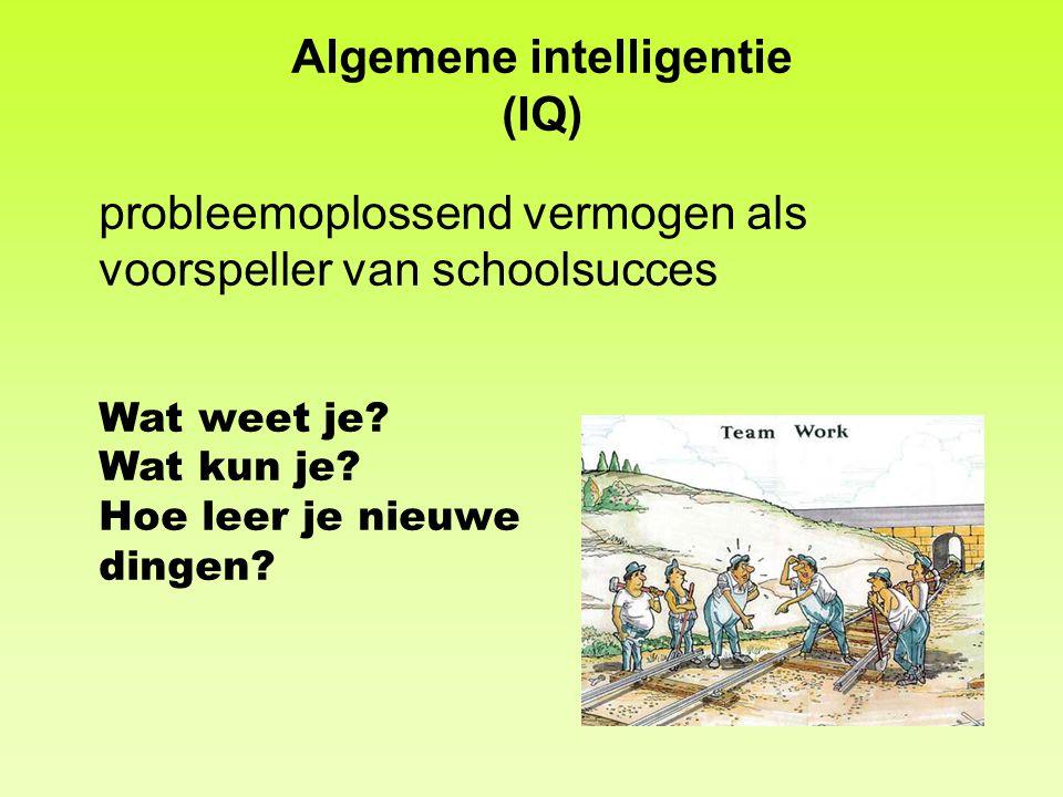 Algemene intelligentie (IQ) probleemoplossend vermogen als voorspeller van schoolsucces Wat weet je? Wat kun je? Hoe leer je nieuwe dingen?