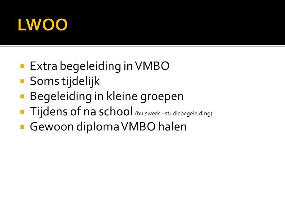  Extra begeleiding in VMBO  Soms tijdelijk  Begeleiding in kleine groepen  Tijdens of na school (huiswerk –studiebegeleiding)  Gewoon diploma VMB