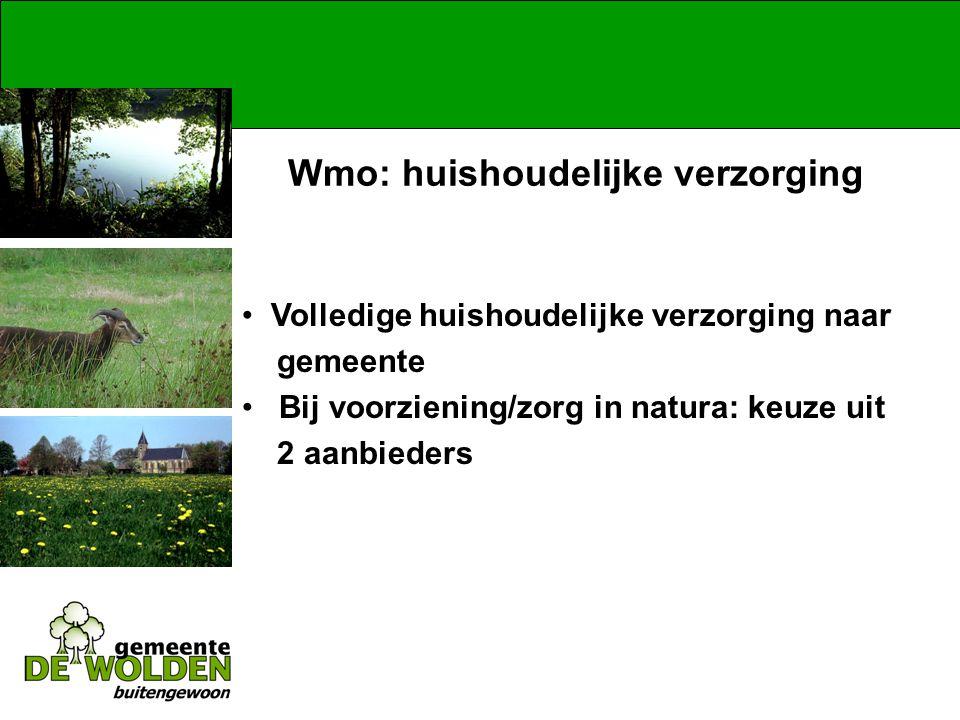 Wmo: huishoudelijke verzorging Volledige huishoudelijke verzorging naar gemeente Bij voorziening/zorg in natura: keuze uit 2 aanbieders