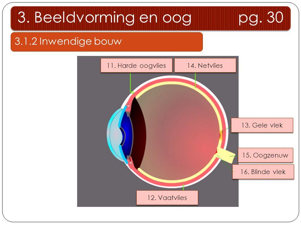 Experiment Schematische voorstelling van de stralengang bij bolle lenzen onderzoeken F1F1 F2F2 O Lichtstraal evenwijdig met hoofdas Lichtstaal door optisch middelpunt Lichtstaal door hoofdbrandpunt F 1 gebroken lichtstraal door brandpunt F 2 geen breking, lichtstraal gaat rechtdoor gebroken lichtstraal evenwijdig met hoofdas 3.3 Beeldvorming bij bolle lenzen 3.