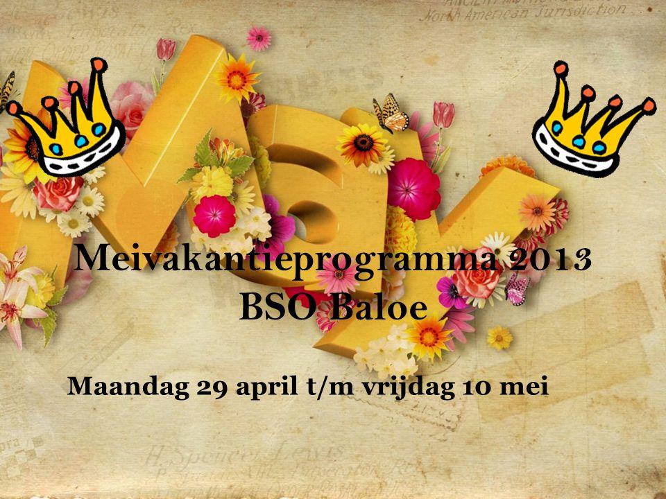 Meivakantieprogramma 2013 BSO Baloe Maandag 29 april t/m vrijdag 10 mei