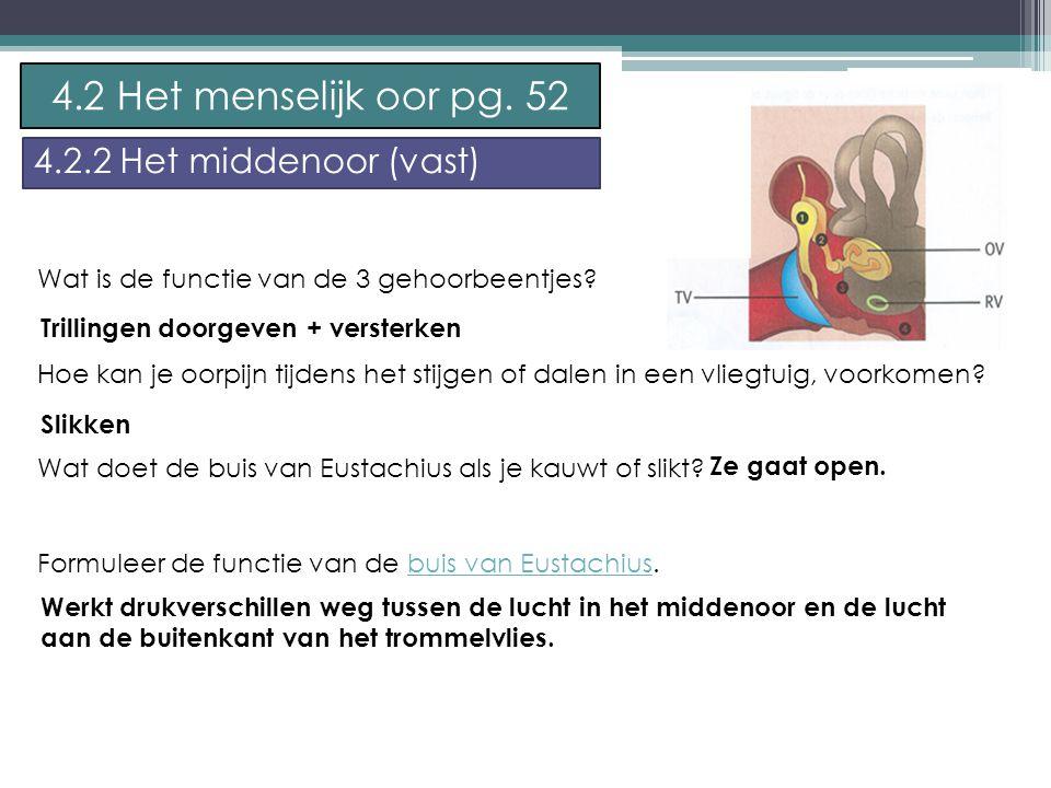 P.Feys - Sint – Jorisschool Menen 4.2 Het menselijk oor pg.