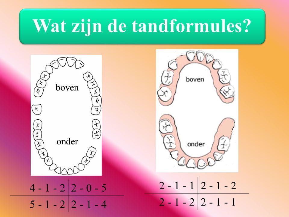 4 - 1 - 22 - 0 - 5 5 - 1 - 22 - 1 - 4 boven onder Wat zijn de tandformules? 2 - 1 - 12 - 1 - 2 2 - 1 - 1