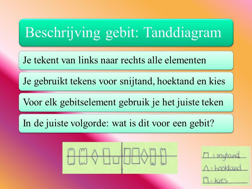 Beschrijving gebit: Tanddiagram Je tekent van links naar rechts alle elementenJe gebruikt tekens voor snijtand, hoektand en kiesVoor elk gebitselement